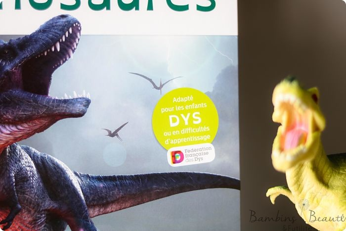 dinosaures DYS