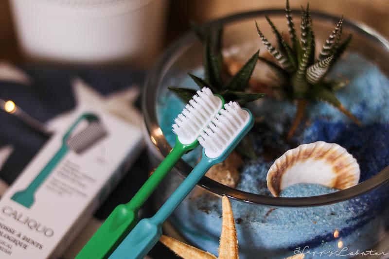 Brosse à dents écologique Caliquo